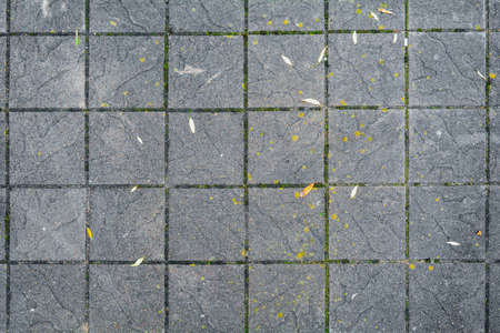 Concrete pavement background on the public pave way. Big square tiles laid on outdoor ground. Urban pave with moss and little bit leaves