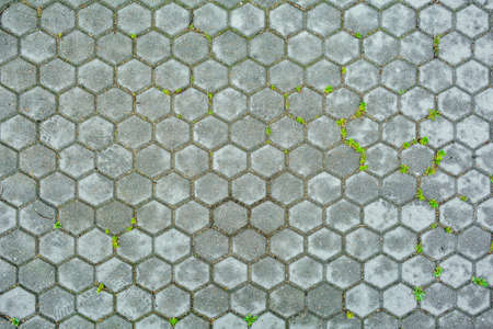 Hexagonal stone background of pavement with grass. Texture of hexagonal cobble paving is laid on the city street Stok Fotoğraf