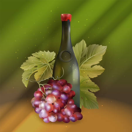 Vector illustration of realistic wine bottle and grape branch with green leaf 일러스트