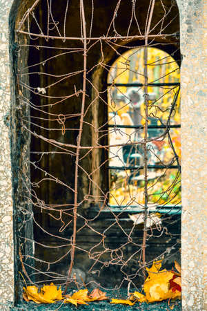 Window hole with lattice of old abandoned burial tomb crypt in public cemetery. Autumn and death concept.