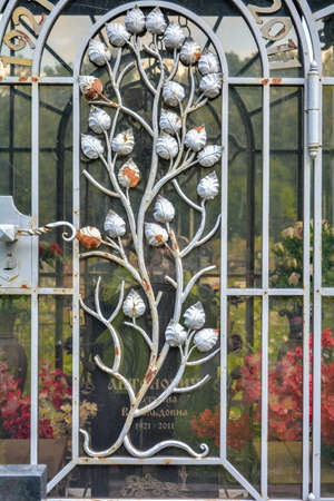 Fragment of glass covered decorative lattice with branches and leaves. Detail of old wrought iron fence with plant elements with peeling white paint and rust 版權商用圖片 - 141669245