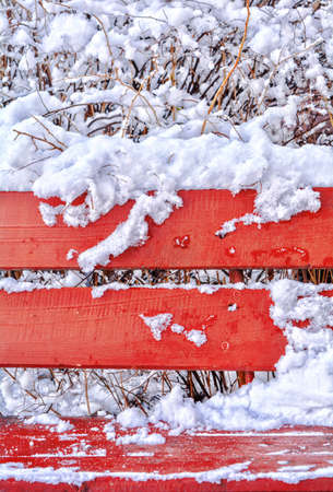 Snow covered red wooden bench in winter park as display or background. Red bench with white fluffy snow and snow covered bushes behind