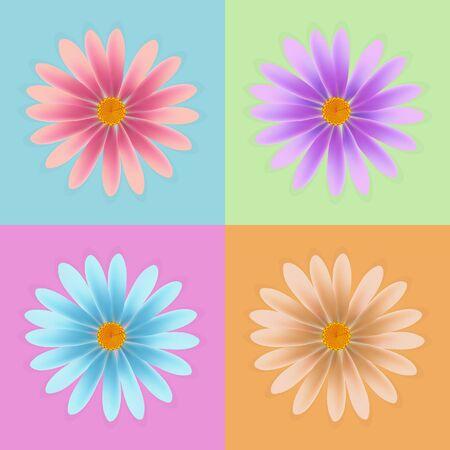 daisy vector: daisy flower vector, colorful daisy vector, flower vector Illustration
