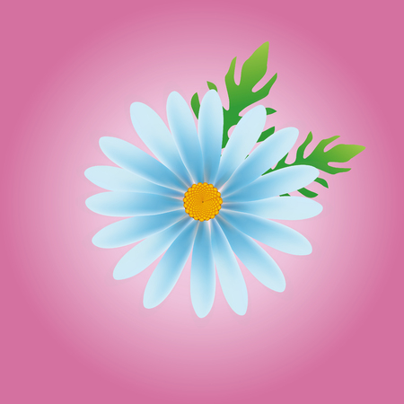 daisy vector: daisy flower vector, daisy vector, flower vector in pink background Illustration