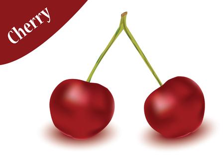 cherry vector in white background, cherry vector Illustration