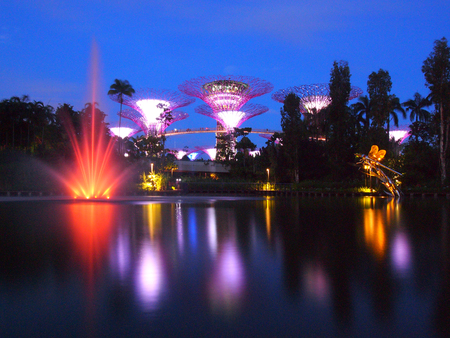 show garden: MARINA BAY SINGAPORE May 30 2015: Big Tree light show night time with the fountain in Garden By The Bay Singapore Editorial
