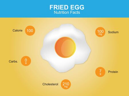 fried egg: fried egg nutrition facts fried egg with information fried egg vector