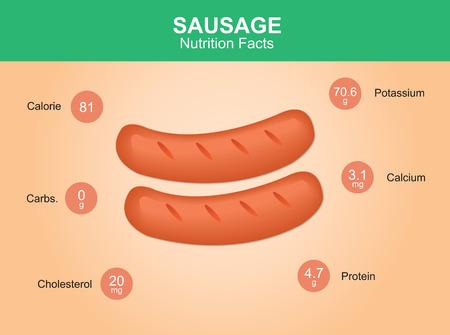 saucisse: saucisses faits de nutrition saucisse avec des saucisses de vecteur d'information Illustration