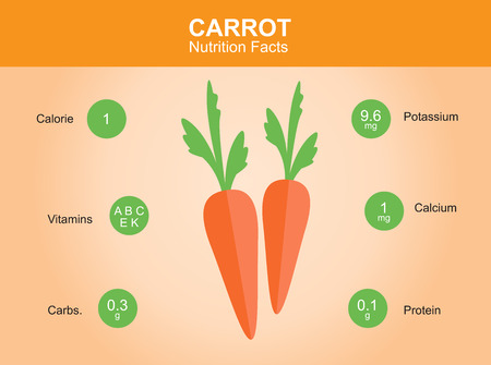 carrot: carrot nutrition facts carrot with information carrot vector Illustration