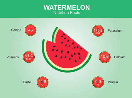 watermelon slice: watermelon nutrition facts watermelon fruit with information watermelon vector Illustration