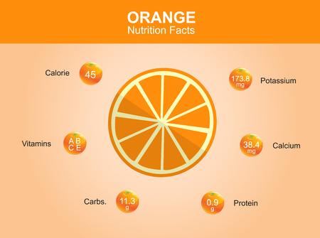 naranja fruta: hechos de la nutrici�n naranja frutas de color naranja con naranja informaci�n vectorial Vectores