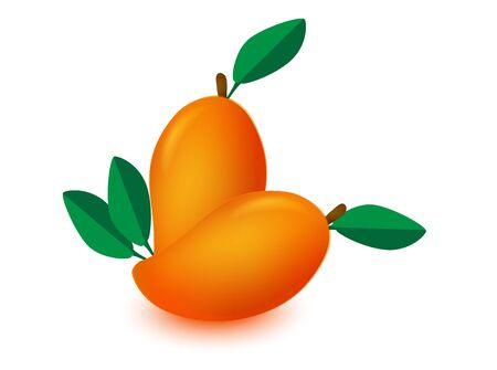 mango isolated mango vector mango