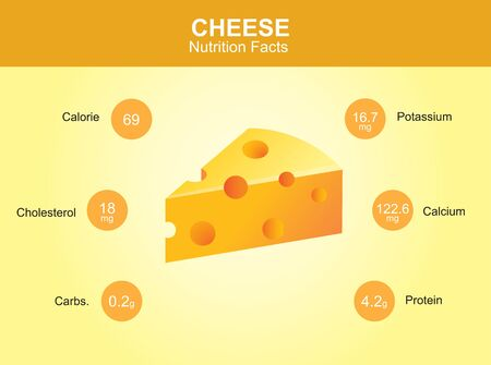 facts: cheese nutrition facts cheese with information cheese vector