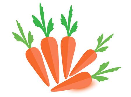 carottes isolé carottes carottes vectorielles