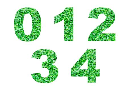 2 0: Numbers 0,1,2,3,4 of green grass isolated on white.