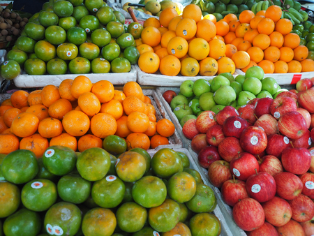 Oranges and other fruits display on the market stand. Standard-Bild