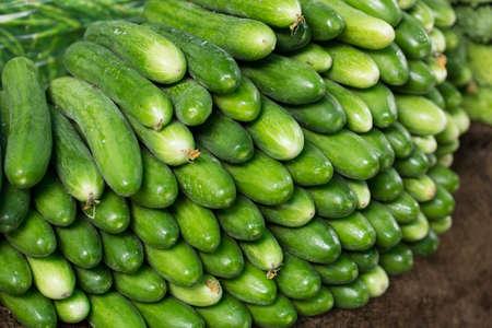 Indian Vegetable Kheera Cucumber