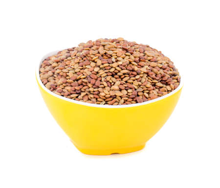 Fresh and healthy Red lentil seeds