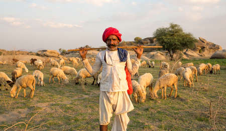 JAWAIBANDH, RAJASTHAN INDIA - March 15, 2016:  rural man from Rebari commuinity wearing traditional turban and casual, this community know as Farmer And Herding Animals Editorial