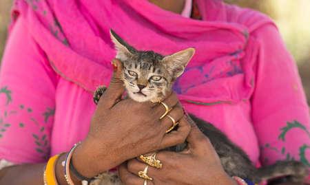 woman holding kitten in hand Stock Photo