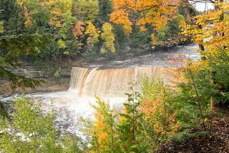 upper peninsula: Autumns at Upper Tahquamenon Falls in the Upper Peninsula of Michigan