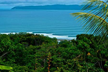 Pavones Costa Rica photo