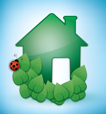 Green Eco-friendly House illustration with leaves and a ladybird on blue. Vector