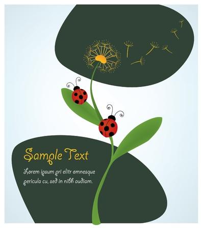 ladybugs in a dandelion Stock Vector - 11562867