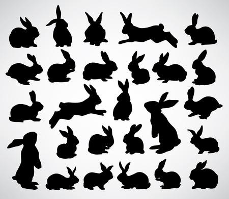colecci�n de siluetas de conejos