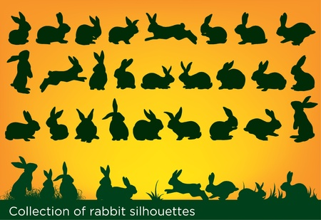 rabbit: collection of rabbit silhouettes Illustration