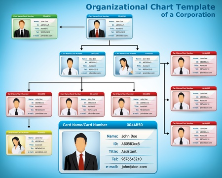 organization chart: Company Structure Diagram with personalized cards for employees