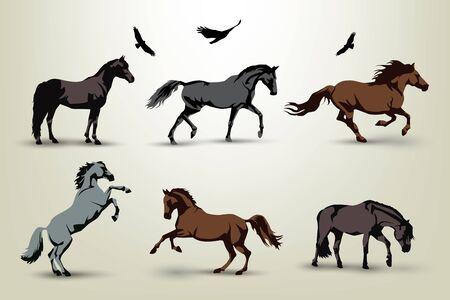 oiseau dessin: Collection de six chevaux sauvages et des oiseaux illustration
