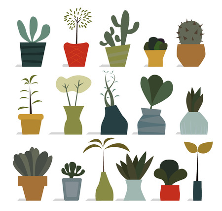 house plant: Various flat styled house plant icons in pots Illustration