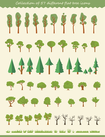Big collection of tree illustrations, pine trees, evergreen trees, grass and other type of trees Illustration