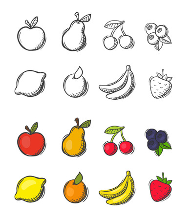 Collection of freehand drawn doodle vector fruit icons
