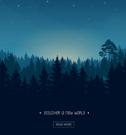 scary forest: Coniferous forest silhouette background image with nightime stars and rays of the sunset