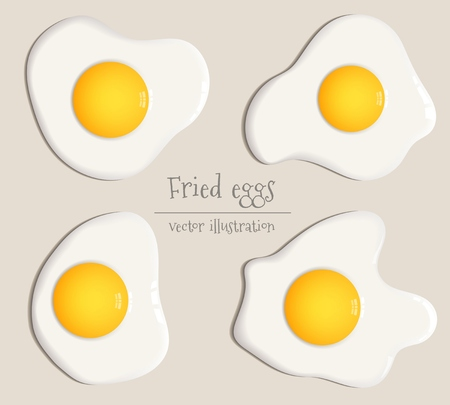 Vector illustration of different fried eggs in realistic style.