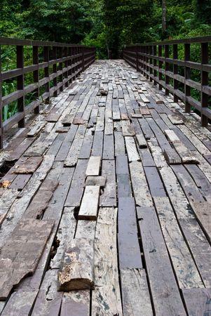 Wooden bridge cross river in khaoyai national park in Thailand photo