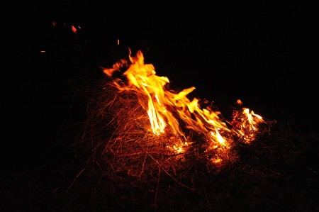 Grass fire burning in the night.