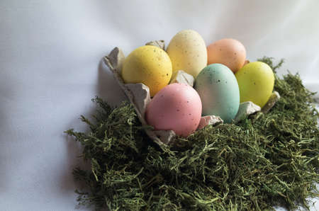 egg carton: Six colored Easter eggs in egg carton nestled in green natural moss