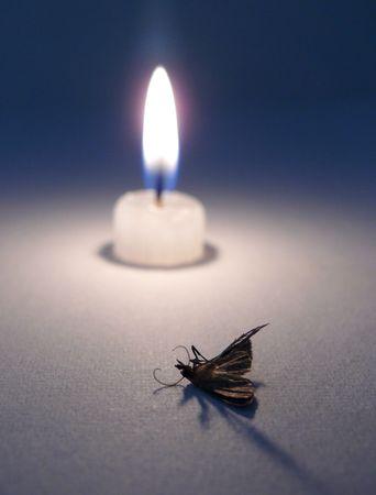 sacrificed: Candle and moth