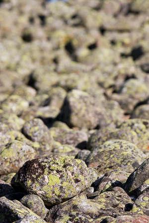 sand mold: Rocky background texture Stock Photo