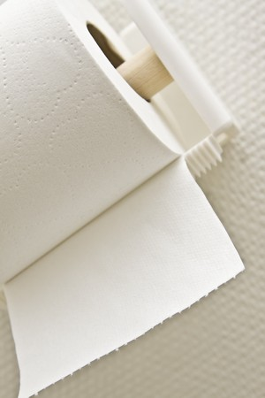 urination: Toilet paper roll on holder