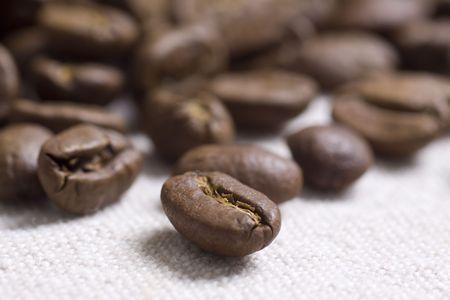Roasted coffee beans on jute sacking Standard-Bild