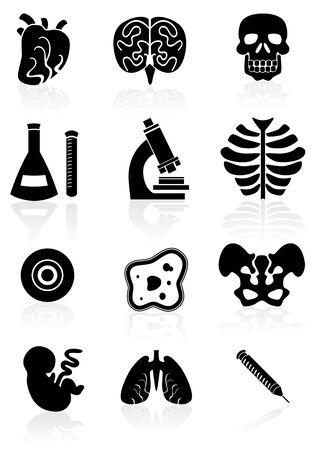 Biology Black Set Vector