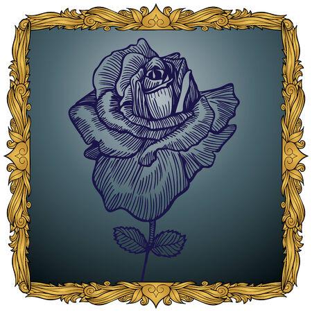 Framed Rose : Hand drawn rose within a detailed gold frame.