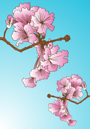 Tree Pink floral Element : Pink  flower growing from a tree branch on a blue sky background. Illustration