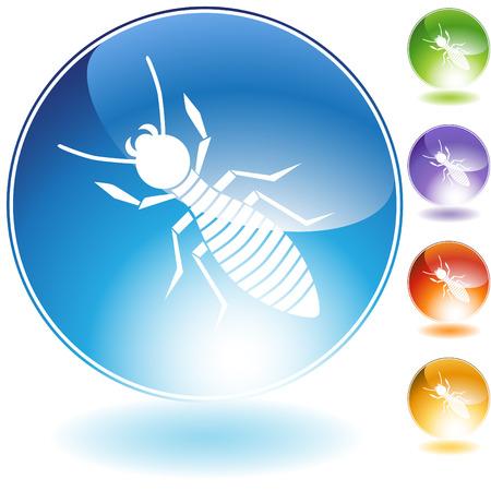 termite:  termite crystal Illustration