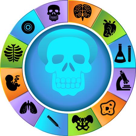 生物学のホイールのアイコンを設定: 医療テーマ ボタン。