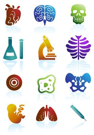 생물학 컬러 아이콘 세트 : 의료 테마 단추.